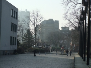 a misty view onto John Dobson Street.. I love this Morning-Dew-Feeling